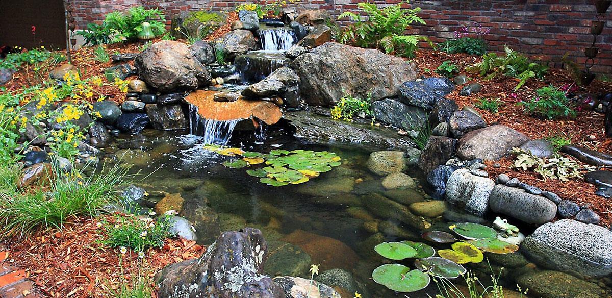 Aquascape Ecosystem Pond Cameron Park