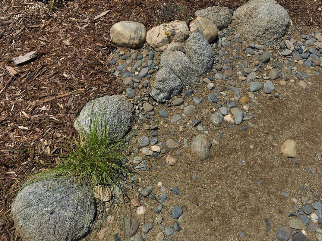 Dry-Creek-16-min