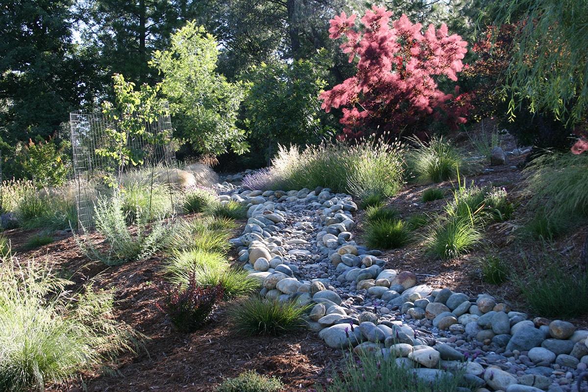 Dry-Creek-2-min