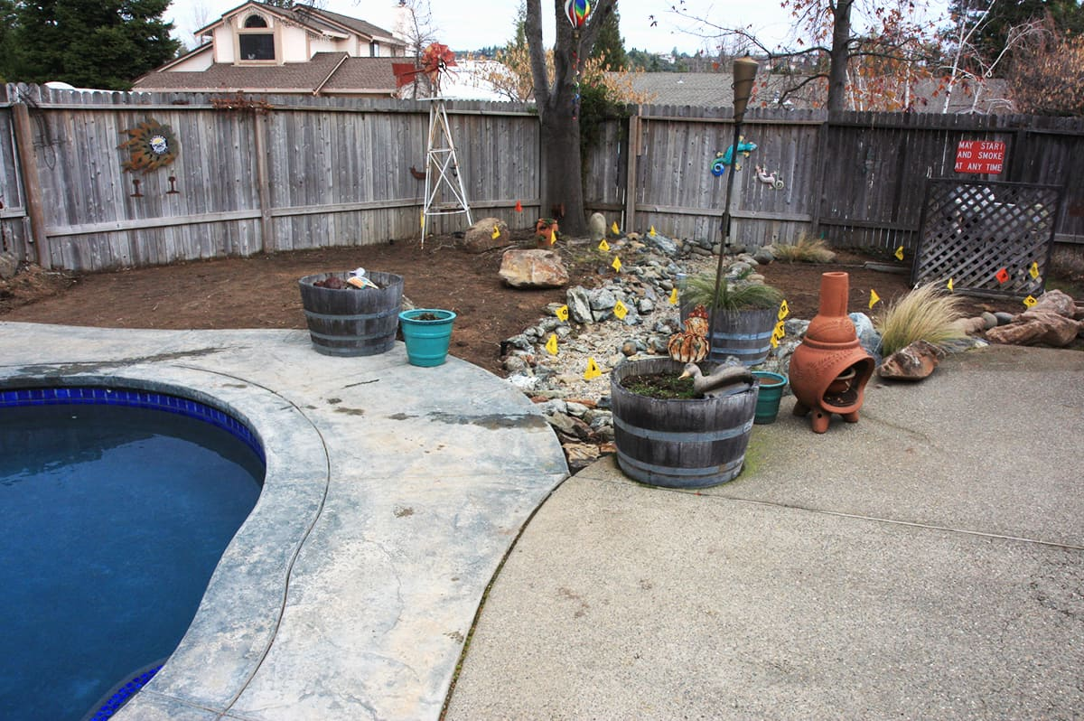 Lawn-Replacement-#1-min