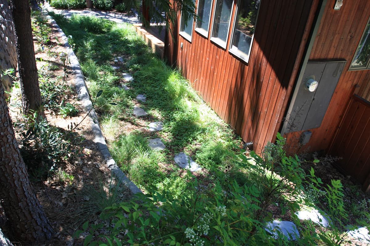 Lawn-Replacement-#21-min