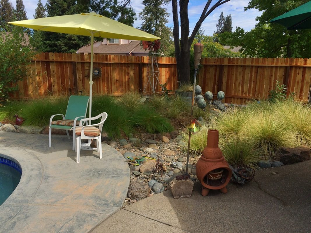 Lawn-Replacement-#3-min