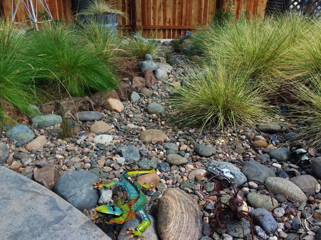 Lawn-Replacement-#4-min